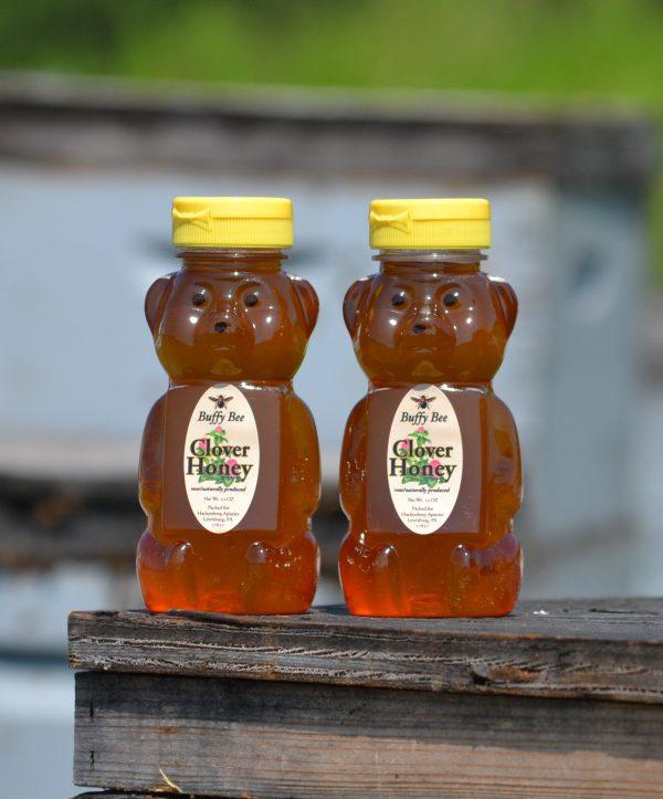 Clover Honey Bear - 2 pack